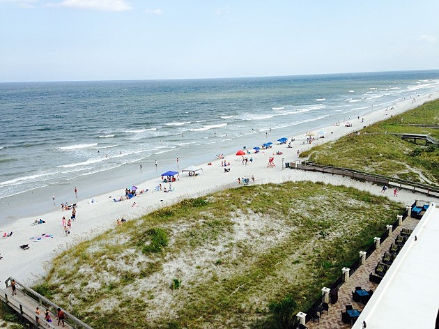Wayland - Daytona Beach