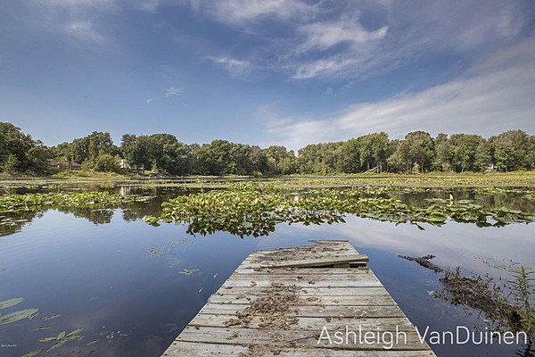 Waterfront Homes For Sale In Kent County Mi
